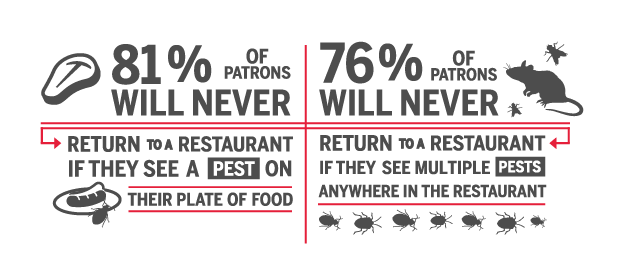 Pest Sightings: How They Affect Your Restaurant's Reputation and Bottom Line